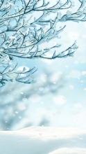 зимние заставки на айфон