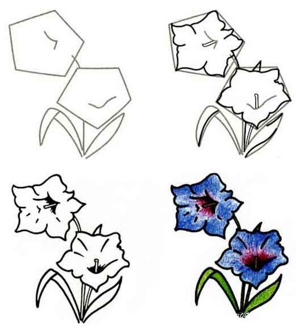 простые картинки цветов пошагово
