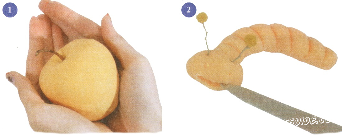 Roll the ball and press the table. When the blank is dry, turn it over and stuck to the dough to get the ball. Take the dried tail of the present apple and attach it to the middle of the top of the ball.