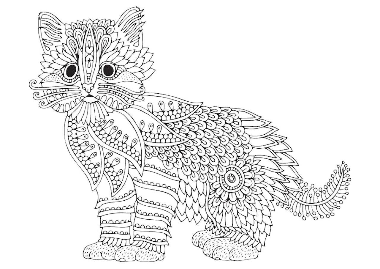 Раскраски антистресс котик