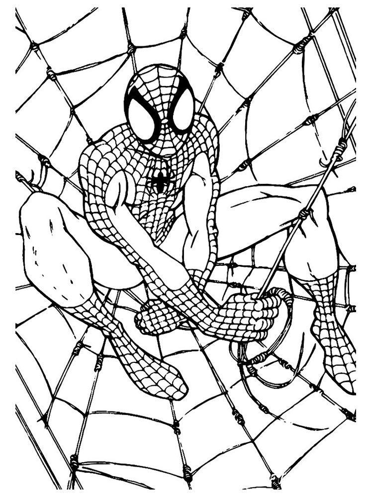раскраска spider men