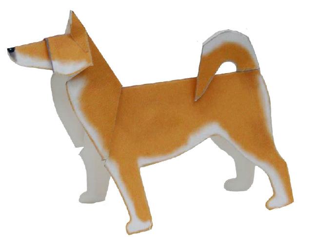 Shiba(dog)