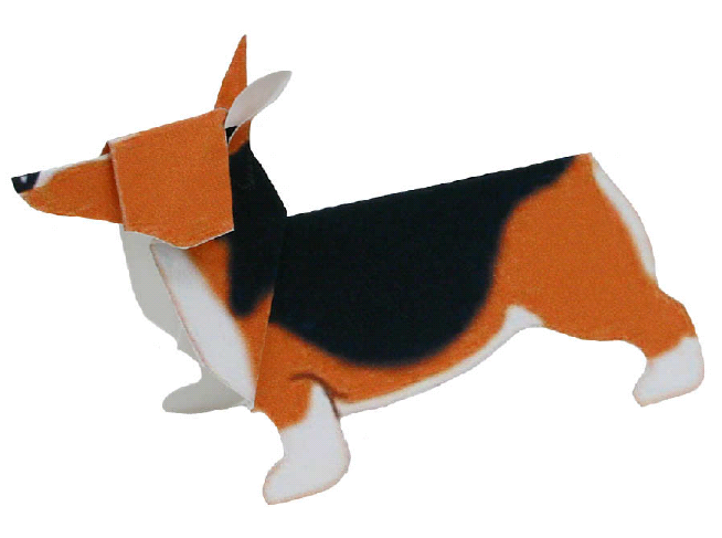 Pembroke Welsh Corgi(dog)