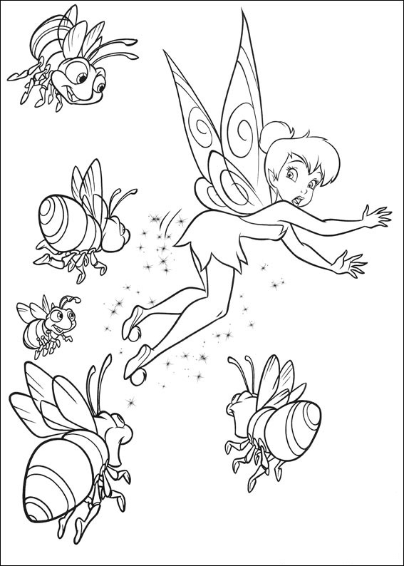 Enter the land of Tinker Bell and her four best fairy friends.