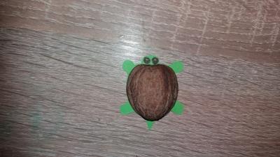 черепаха из скорлупы грецкого ореха