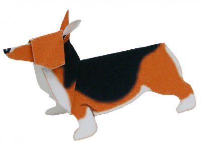 Pembroke Welsh Corgi(dog)