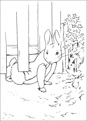 раскраски кролик питер