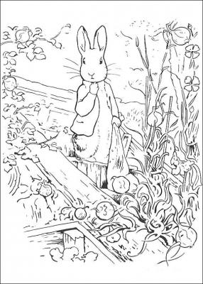 разукрашки кролик питер